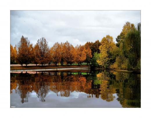 L'autunno bella.jpg